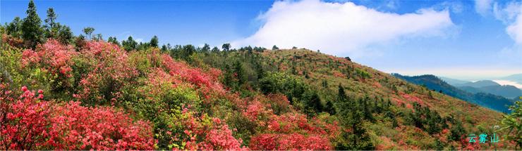 黄陂美景 木兰·云雾山